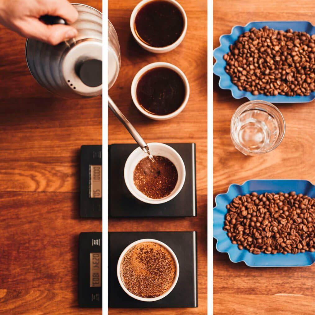 cata de cafe de brasil